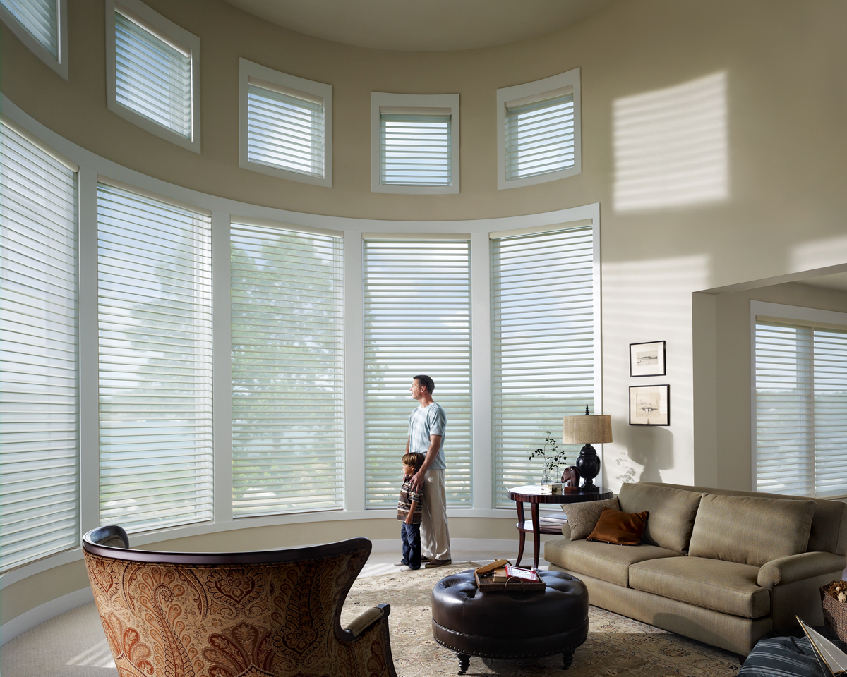 Affordable blinds and design lincoln nebraska for Window blinds with designs