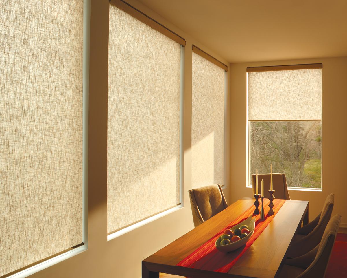 Designer Roller Shades : Affordable blinds and design lincoln nebraska